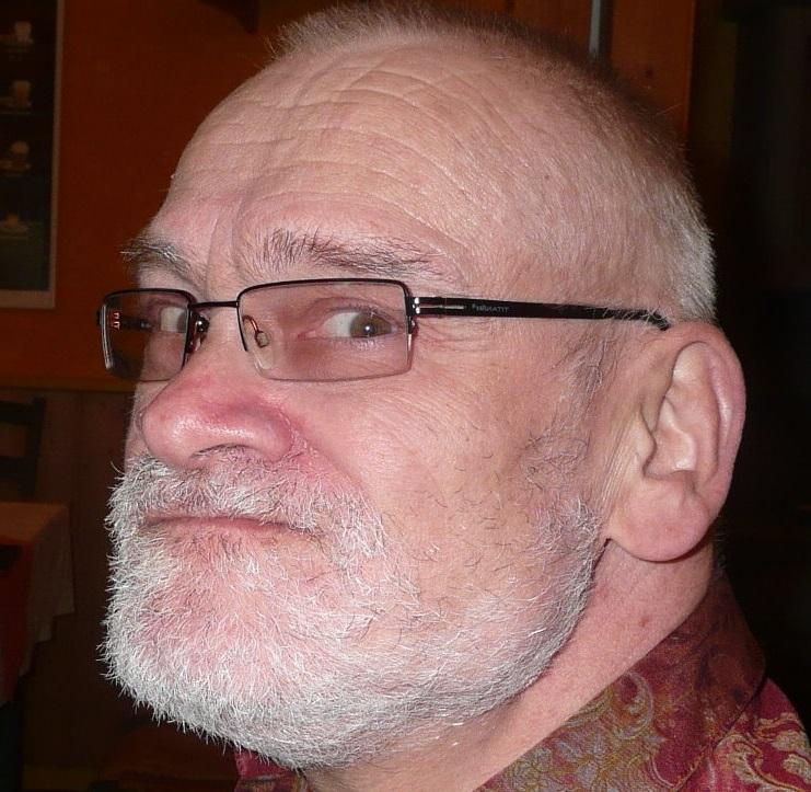 Kopf eines Mannes mit kuzen grauen Haaren, Vollbart und Brille